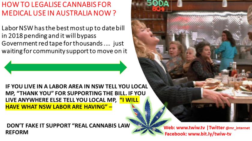 foley cannabis 2018